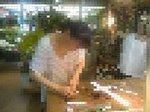 広末涼子の画像1.JPG